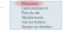 Metadata link