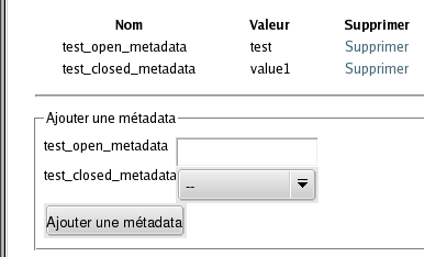 Metadata view